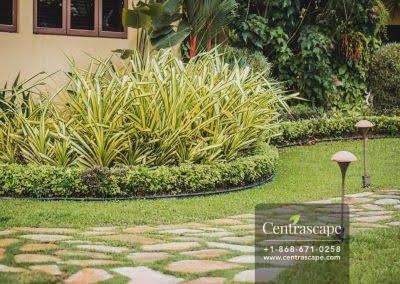 Centrascape - Charming Bangalow - 03