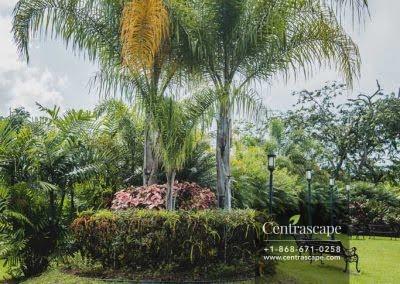 Centrascape - Charming Bangalow - 17