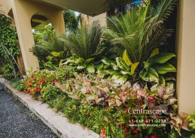 Centrascape - Charming Bangalow - 24