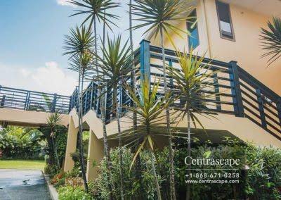 Centrascape - Charming Bangalow - 25