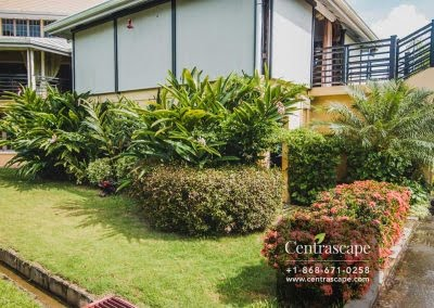 Centrascape - Charming Bangalow - 28