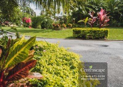Centrascape - Charming Bangalow - 29