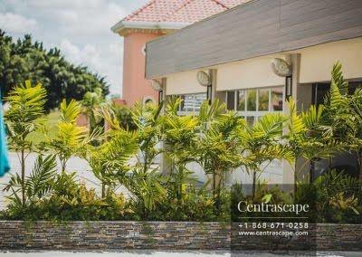 Centrascape - Modern Splendor - 23