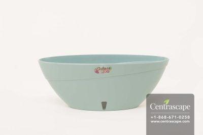 Centrascape - Pots - Calipso