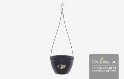 Centrascape - Pots - Vista