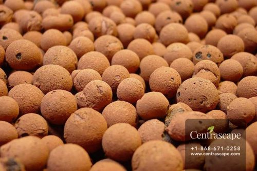 Centrascape - Soil - Orchid Gro Expanded Clay Pebbles