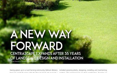 A New Way Forward