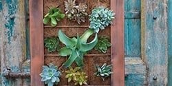 menu-pots-wall
