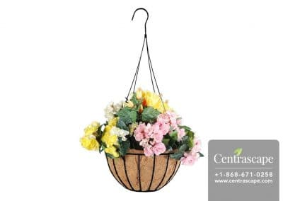 Centrascape - Baskets - Coconut Plater with Liner