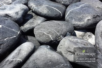 Centrascape - Black-Stone