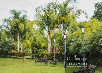 Centrascape - Charming Bangalow - 07