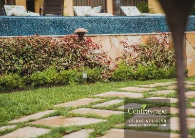 Centrascape - Charming Bangalow - 08
