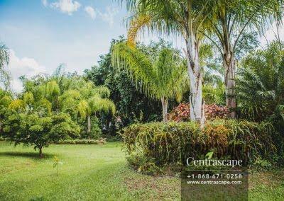 Centrascape - Charming Bangalow - 12