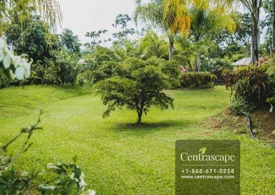 Centrascape - Charming Bangalow - 21
