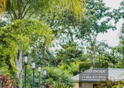 Centrascape - Charming Bangalow - 35