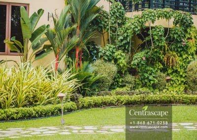 Centrascape - Charming Bangalow - 36