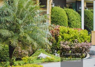 Centrascape - Charming Bangalow - 37