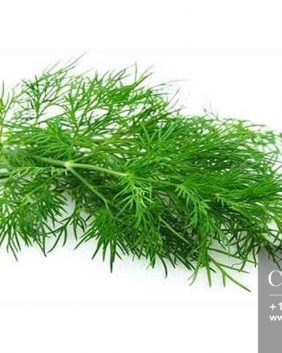 Centrascape - Herbs - Fennel