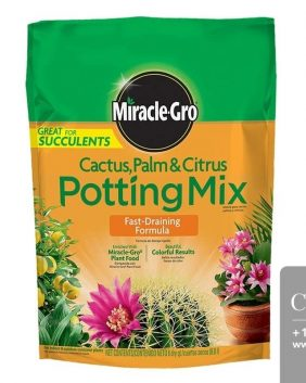 Centrascape - Miracle Gro Cactus, Palm and Citrus Potting Mix