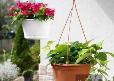 Centrasacpe - Pots - Round Hanging