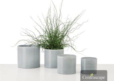 Centrascape - Pots - Cover Pot 24