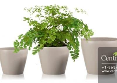 Centrascape - Pots - Cover Pot 26