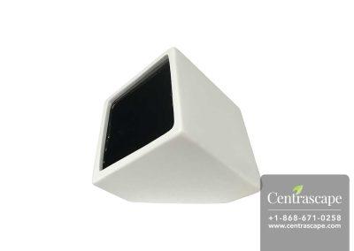 Centrascape---Pots---Cube-Wall-Planter