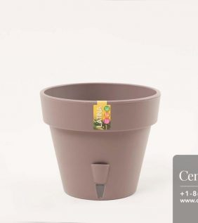 Centrascape - Pots - Latina