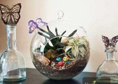 Centrascape - Pots - Mika Glass Globe Terrarium 1