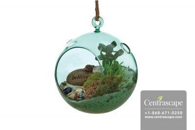 Centrascape - Pots - Mika Glass Globe Terrarium