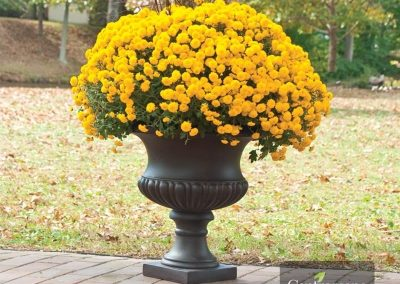 Centrascape - Pots - Short Classic Urn 4