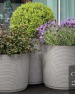 Centrascape - Pots - Urban Vases