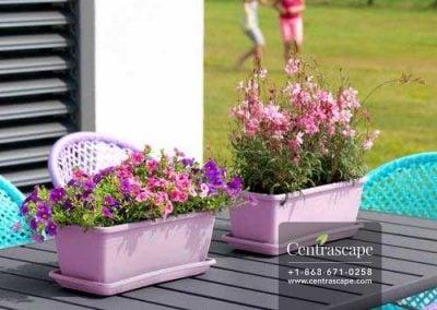 Centrascape - Pots - Windowbox Saucer