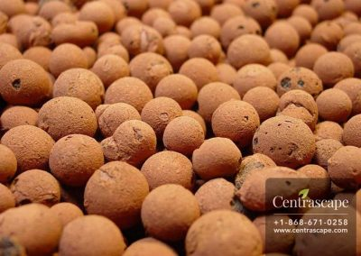 Centrascape---Soil---Orchid-Gro-Expanded-Clay-Pebbles