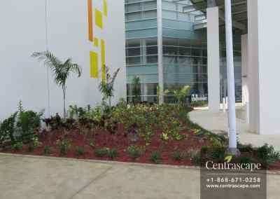 Couva Children's Hospital 13