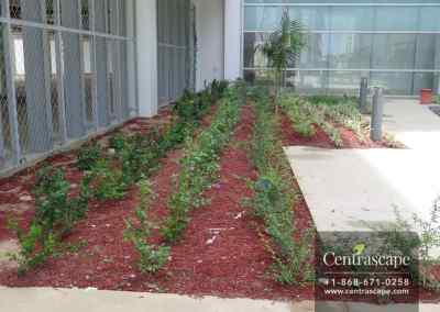 Couva Children's Hospital 18