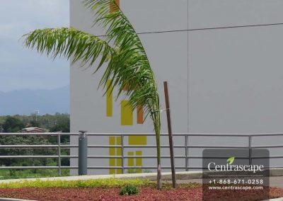 Couva Children's Hospital 4