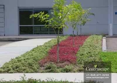 Couva Children's Hospital 5