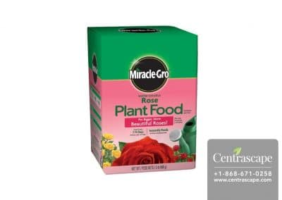US-Miracle-Gro-Water-Soluble-Rose-Plant-Food-2000221-Main-Lrg