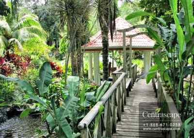 asian garden 3