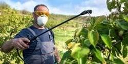 menu-chemicalsAndFertilizers-fungicides