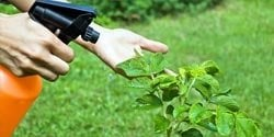 menu-chemicalsAndFertilizers-herbicides