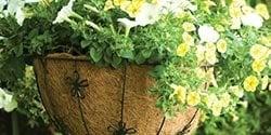 menu-pots-baskets