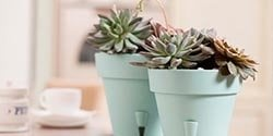 menu-pots-plastic